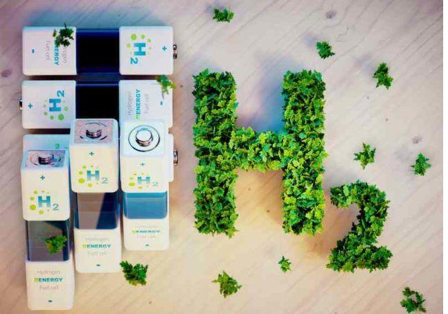 Green Hydrogen Policy